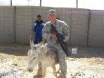 sgt-meyer-donkey