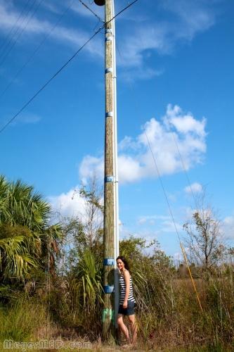 Hurricane Flood Markers