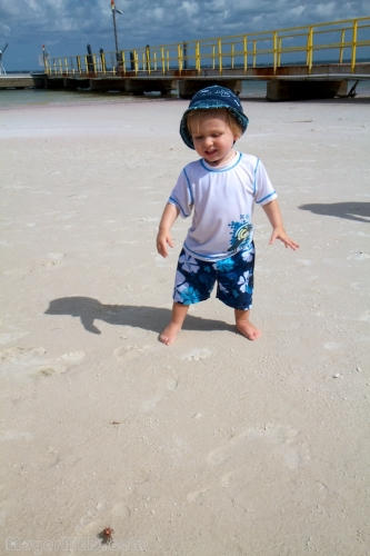 Liam catching a fiddler crab 1