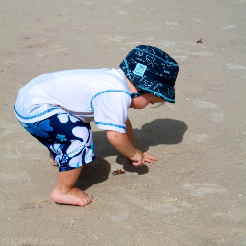 Liam catching a fiddler crab 2