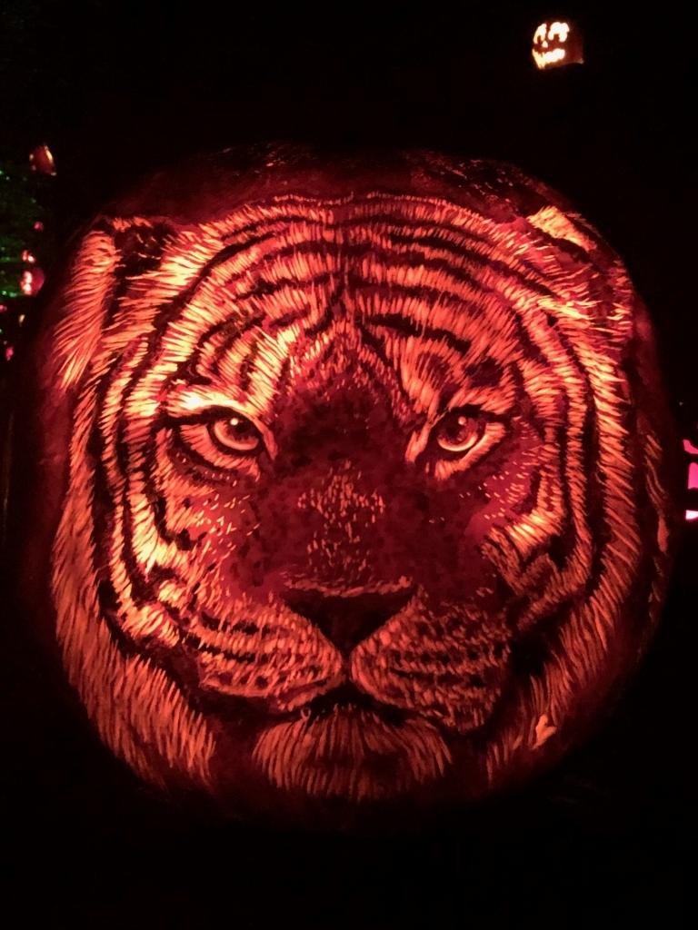 Tiger pumpkin