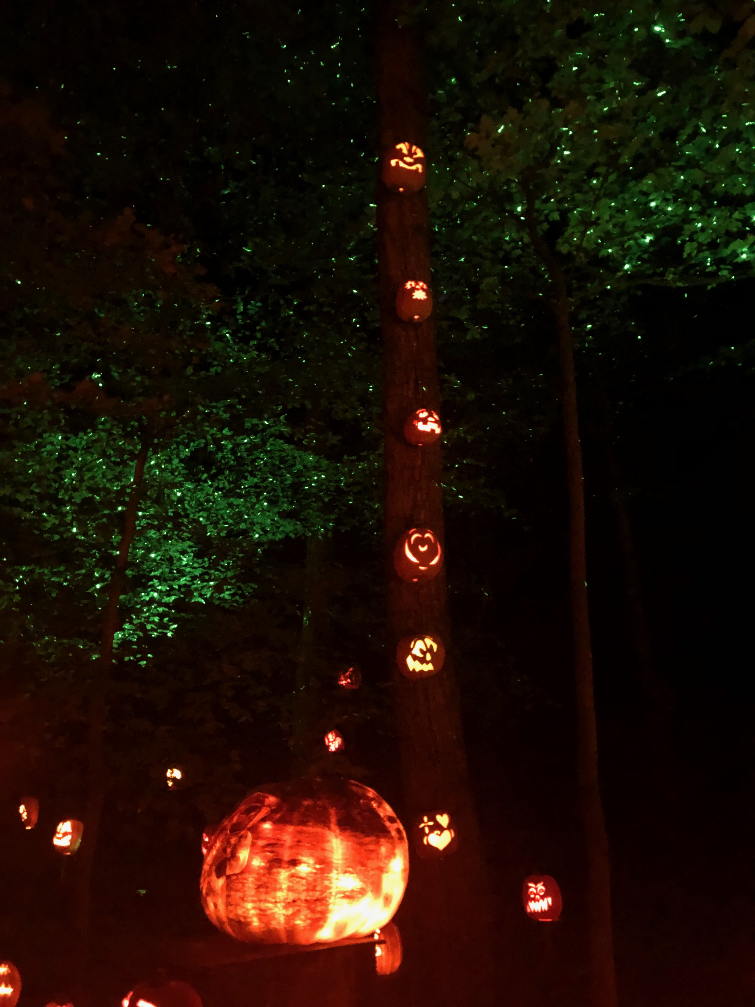 Jack-O-Lantern Spectacular