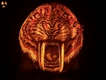 Sabertooth Tiger pumpkin